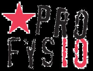 Logo-Profysio-300x230